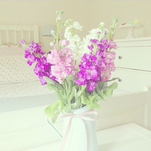 diorangel:  fairylushes:  blushlaei:  ♥blushlaei♥    fairylushes ღ advice     - Fresh and Cute -