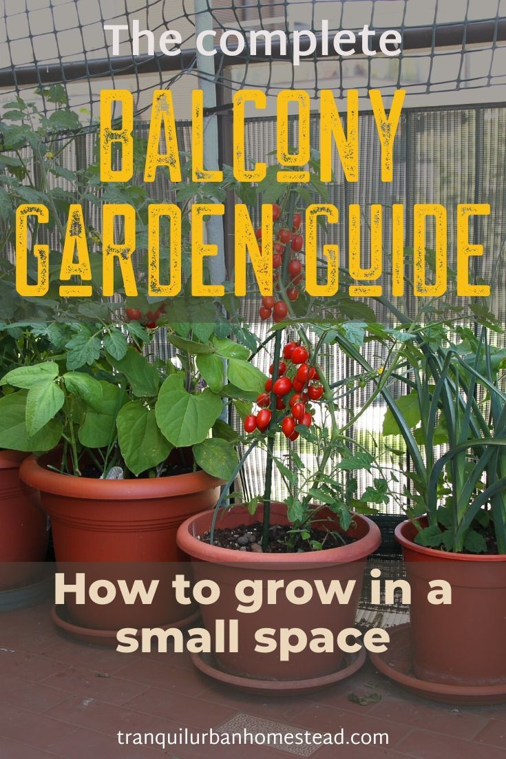 Balcony Garden Guide is part of Small balcony garden, Garden guide, Balcony garden, Small gardens, Garden care, Porch garden - Do you rent or own a condo and only have a small balcony  You can setup a balcony garden and grow your own homegrown food with a few spacesaving tips