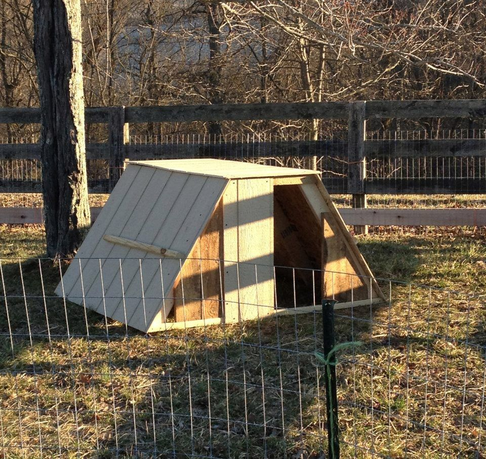 Small Field Shelter/kid House