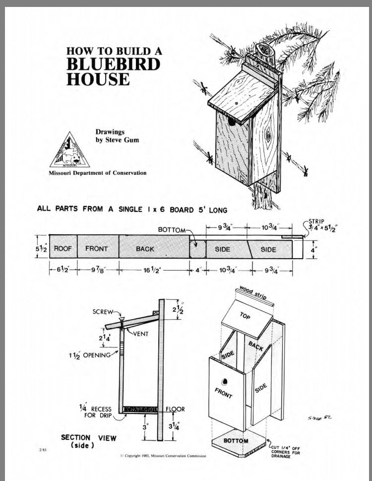 Bluebird house image by Marty Sinclair on Woodworking