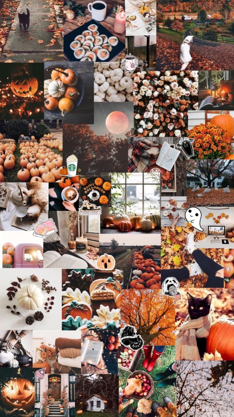 instagram anabel.tousley Halloween wallpaper iphone