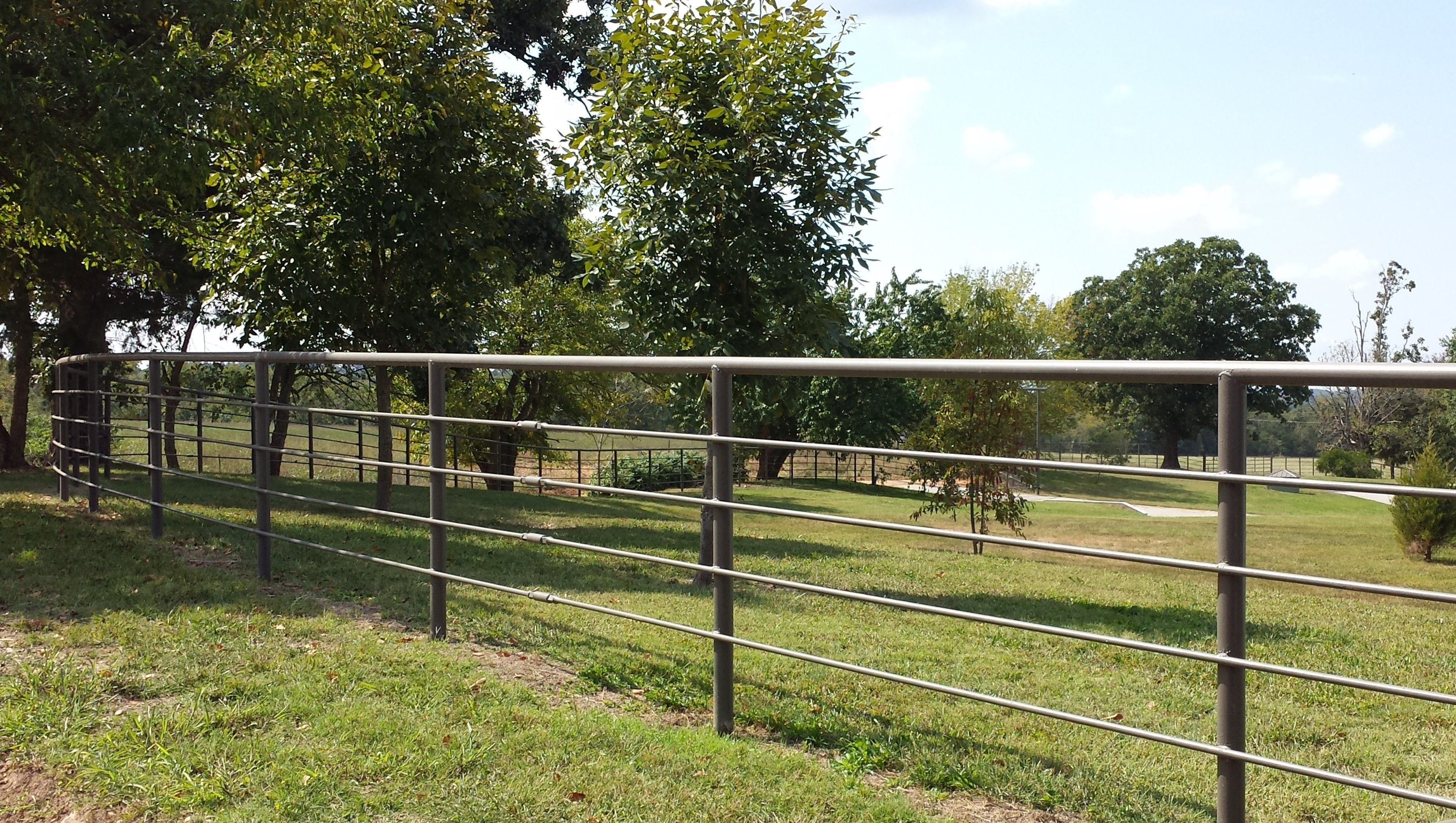 Pipe Fence Horses In 2019 Fencing Material Pipe Fence