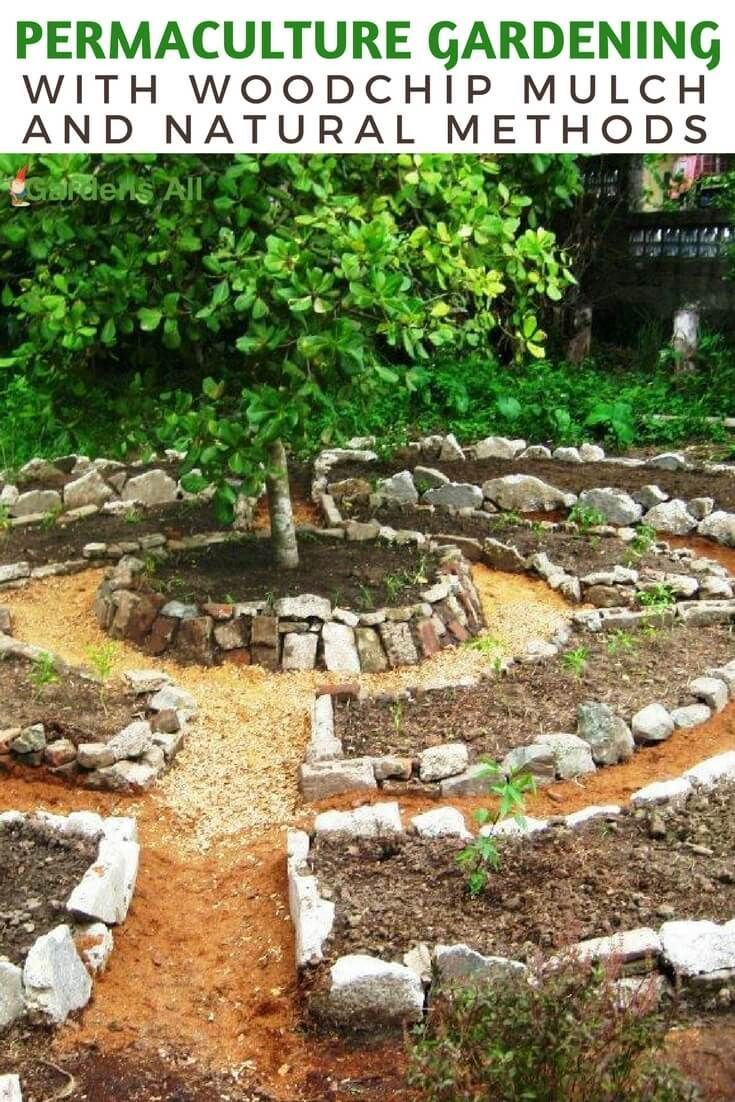 Photo of Permaculture Gardening with Woodchip Mulch and Natural Methods