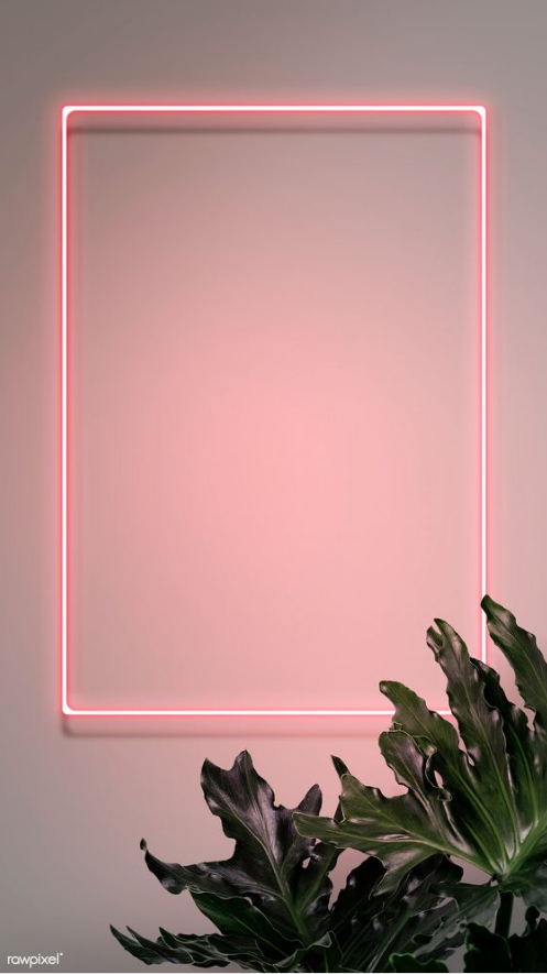 10 Neon Recommended For You Framed Wallpaper Instagram Wallpaper Pink Wallpaper