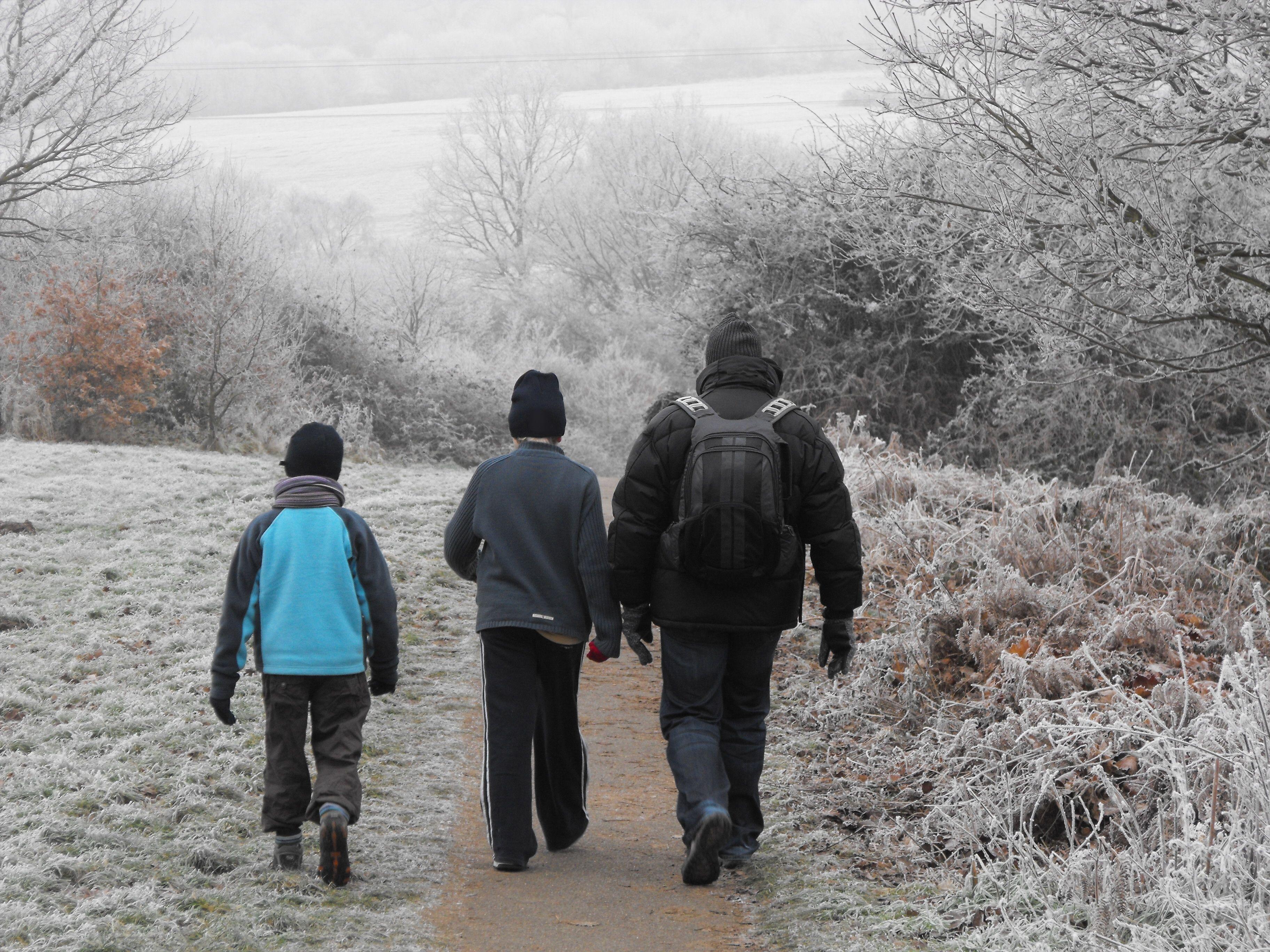 Walking in Farnham Park