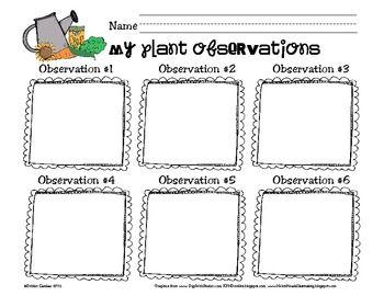 primary plant observation log logs plants and kindergarten science. Black Bedroom Furniture Sets. Home Design Ideas