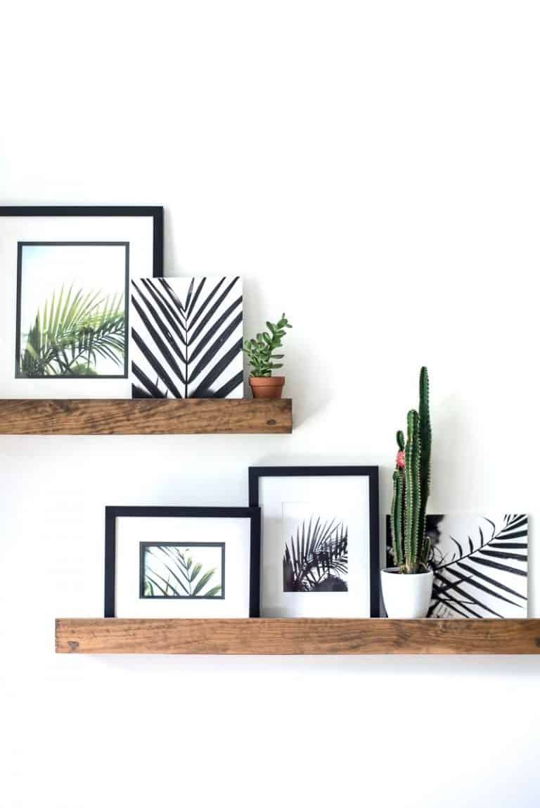 Photo of FREE Palm Printables- My original photographs available to you- FREE!