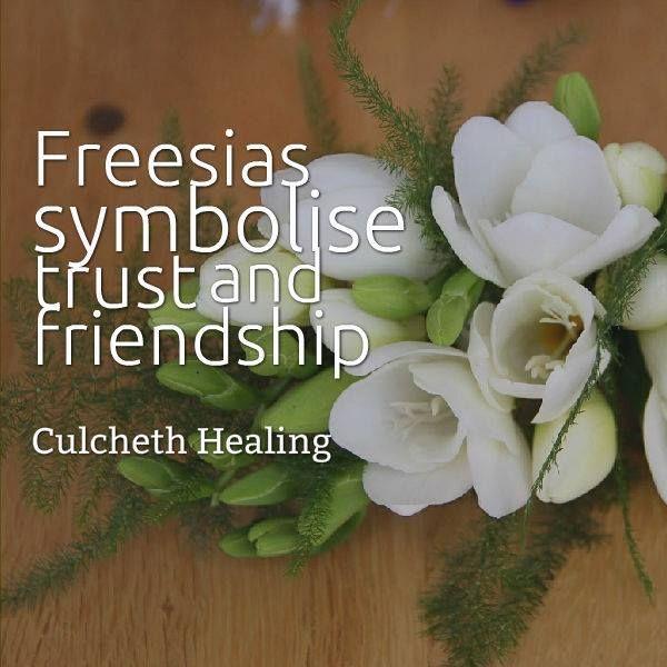 Freesia Flowers Freesia Flowers Energy Healing Health Quotes