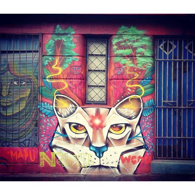 Wallart, Urban art in Santiago Chile.