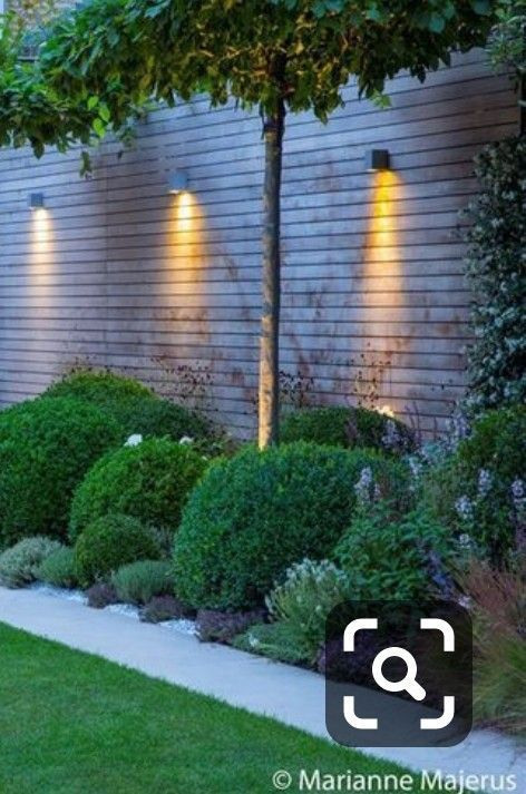 Fence down lights #backpatio Fence down lights
