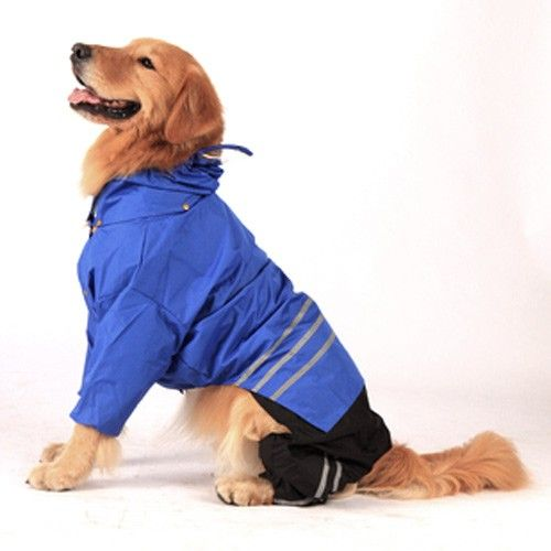 Rain Jacket For Those Quick Trips Outside To Avoid Wet Dog Smell