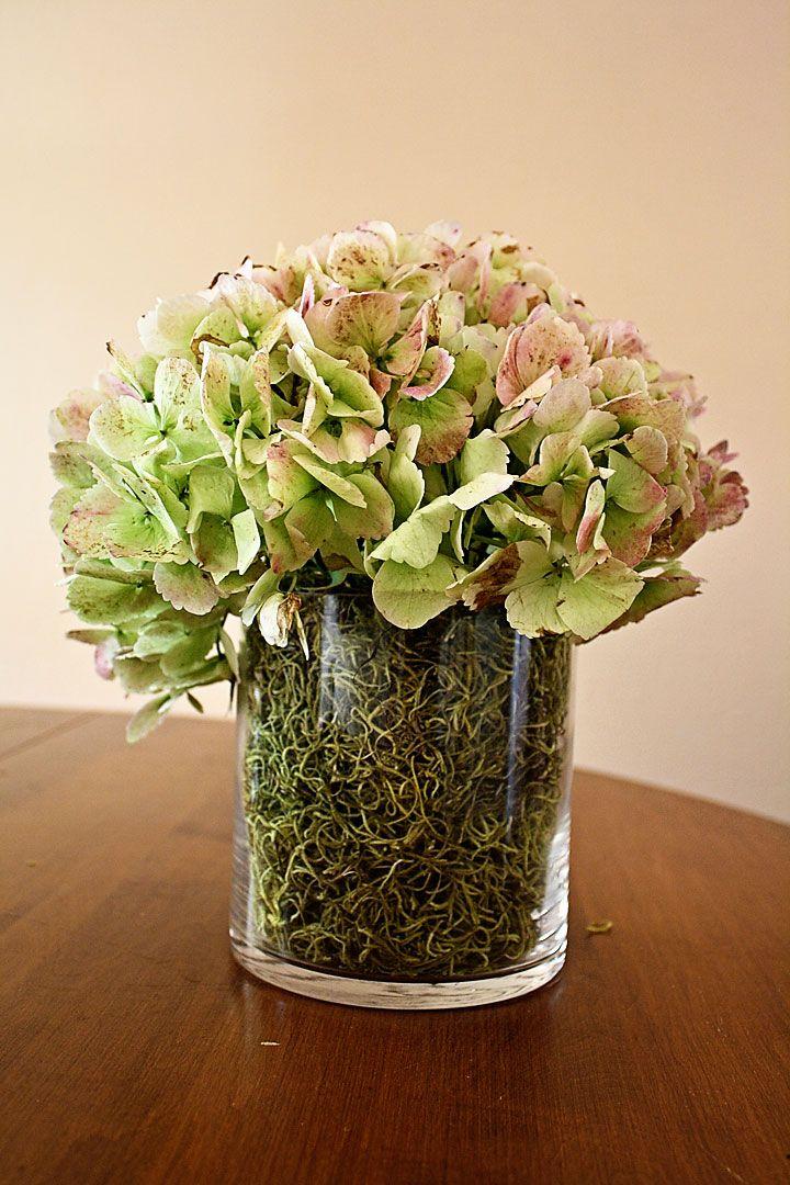 Unique Vase Filler Ideas Filler Vase Thefind Blooms And Blodau