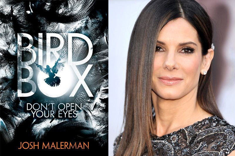 Bird Box gets its first trailer. Netflix SandraBullock