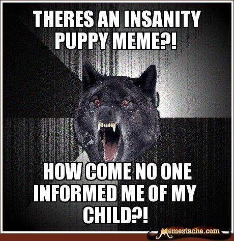 d9a4f50db6545e6ec7c35eaa341b684a insanity wolf meme insanity wolf quotes related pictures meme comp