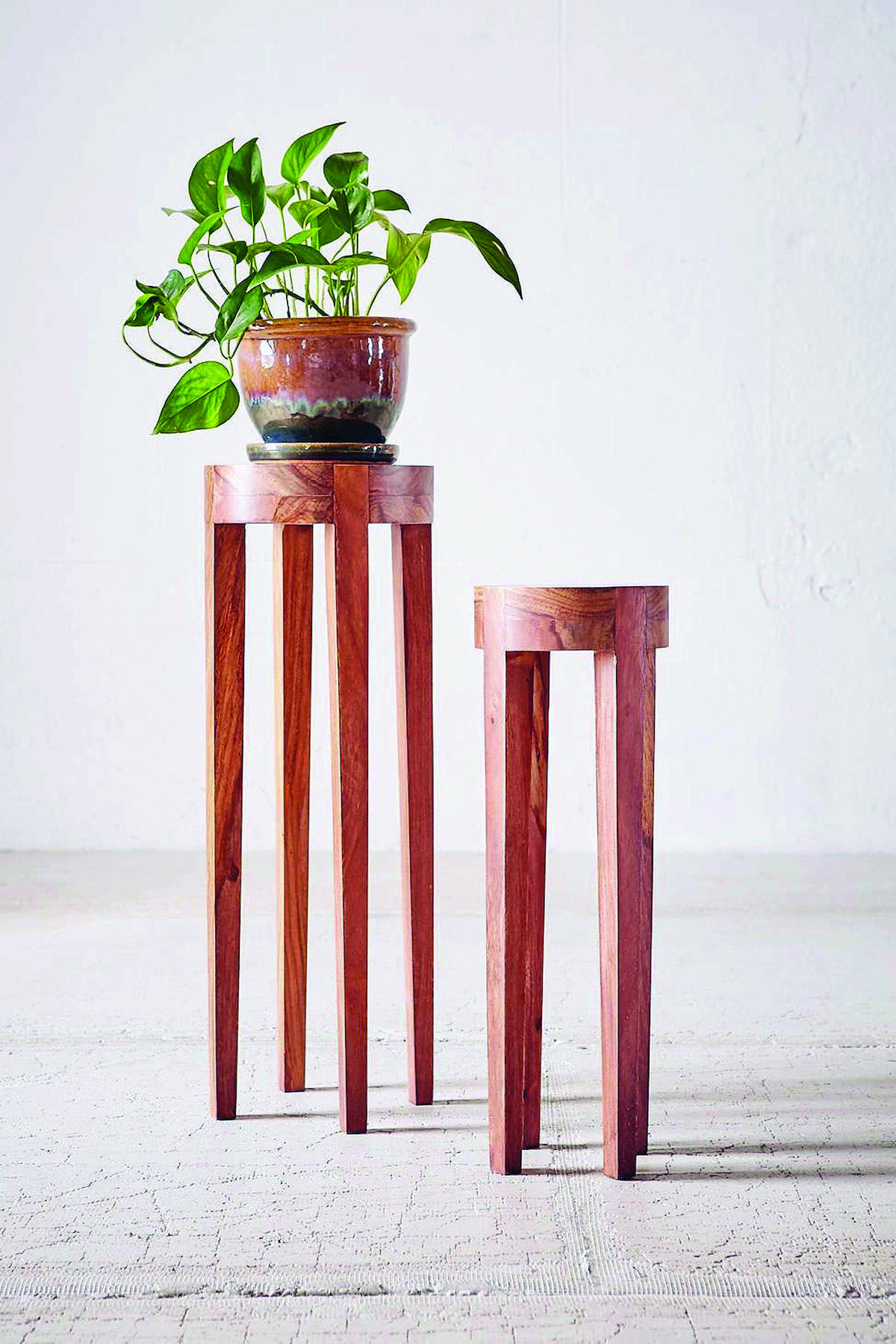 Cool And Contemporary Indoor Plant Stands And Pots Only In Home