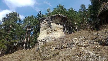 Prírodná pamiatka Ľupčiansky skalný hríb sa nachádza v katastri obce Slovenská Ľupča. Takéto skalné útvary vznikajú zvetrávaním usadených hornín pôsobením vetra, dažďa a mrazu. V okolí skalného hríbu, v piesočnatých usadeninách, sa nachádzajú skamenelé schránky numulitov (morských mäkkýšov). Okres Banská Bystrica