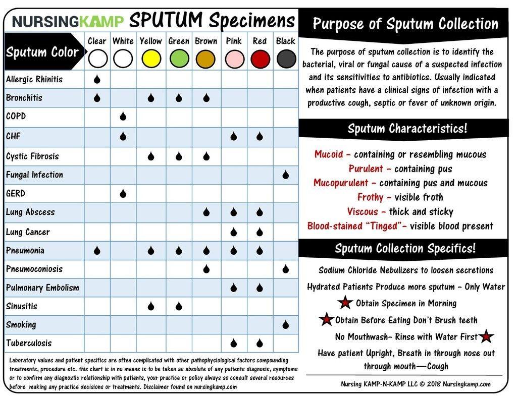 Sputum Collection Data Sheet Nursingkamp Nursing