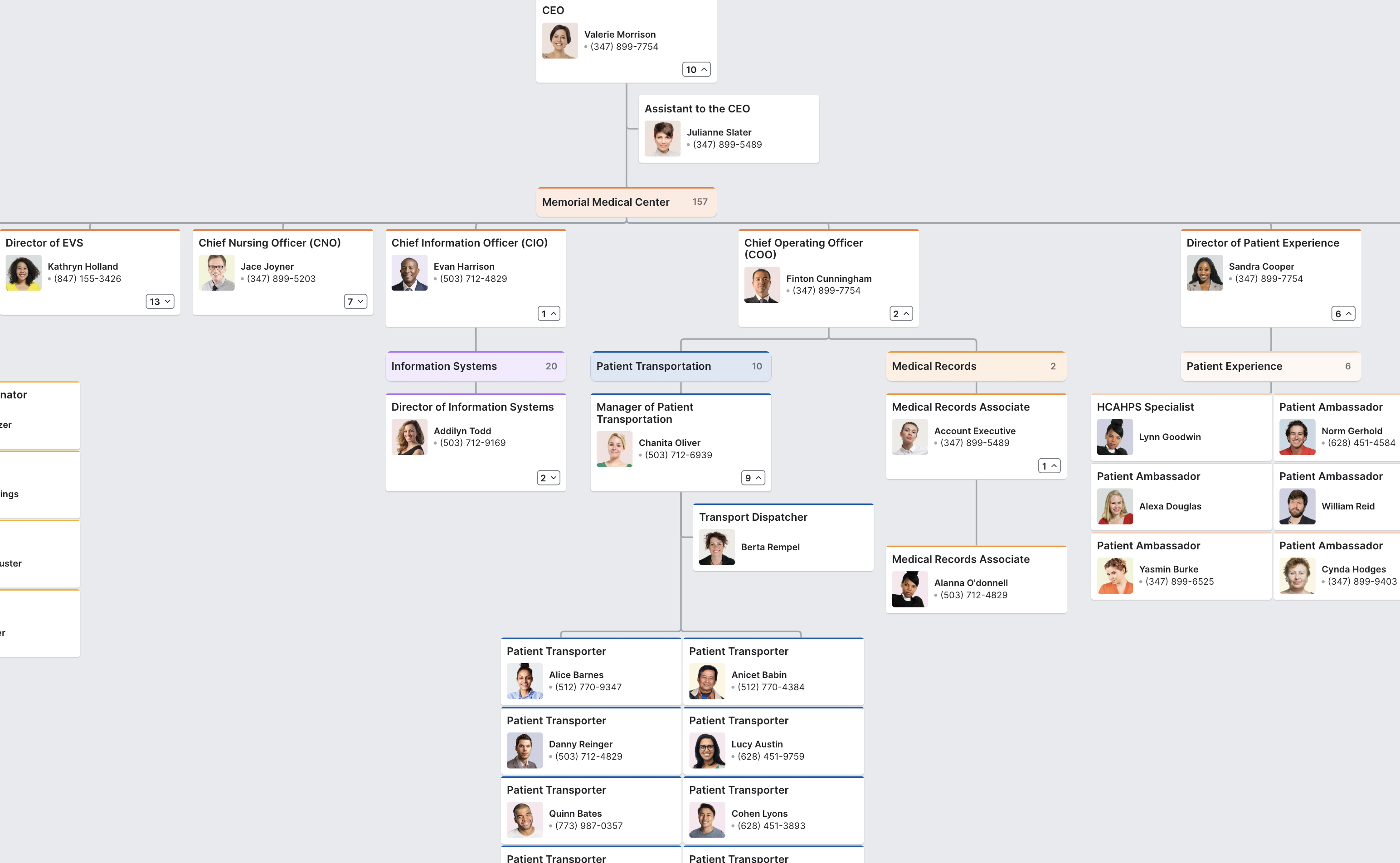 Hospital Organizational Chart Sample In 2020 Organizational Chart Org Chart Chart