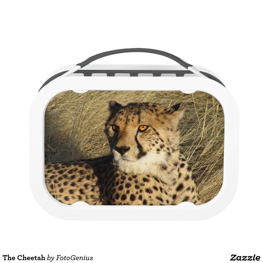 The Cheetah Lunch Box