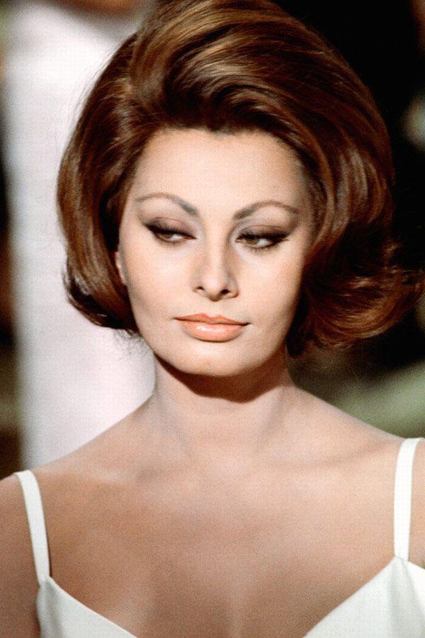 Sophia Loren Google Hollywood Pinterest Sophia