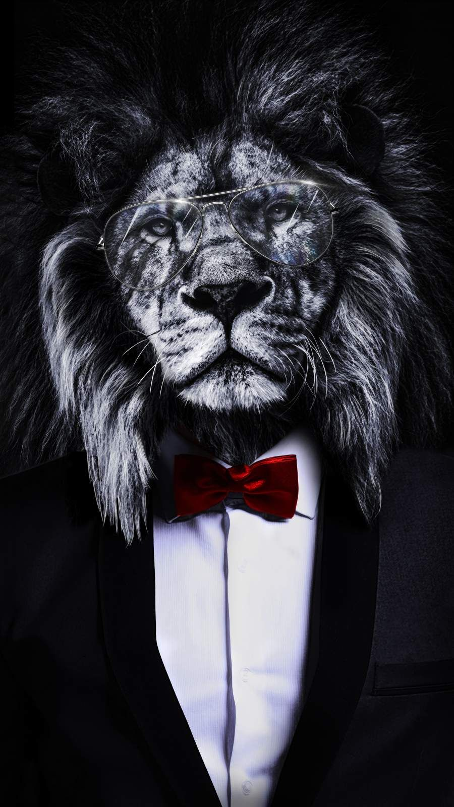 The Corporate Lion Iphone Wallpaper Lion Wallpaper Iphone