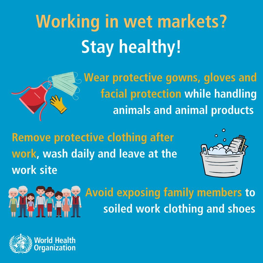 World Health Organization Who On Twitter How To Stay Healthy Health Safety Tips