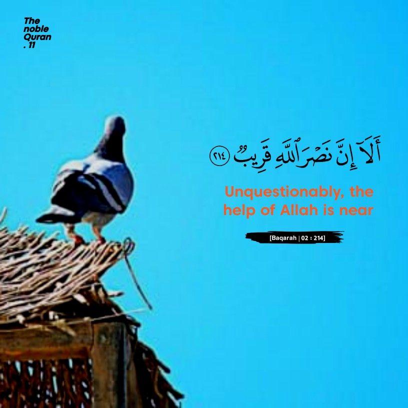 Surah Baqarah Islamic Quotes Quran Quran Verses Quran