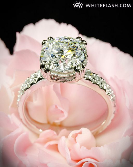 Custom Pave Diamond Engagement Ring Ring Princess cut and Engagement