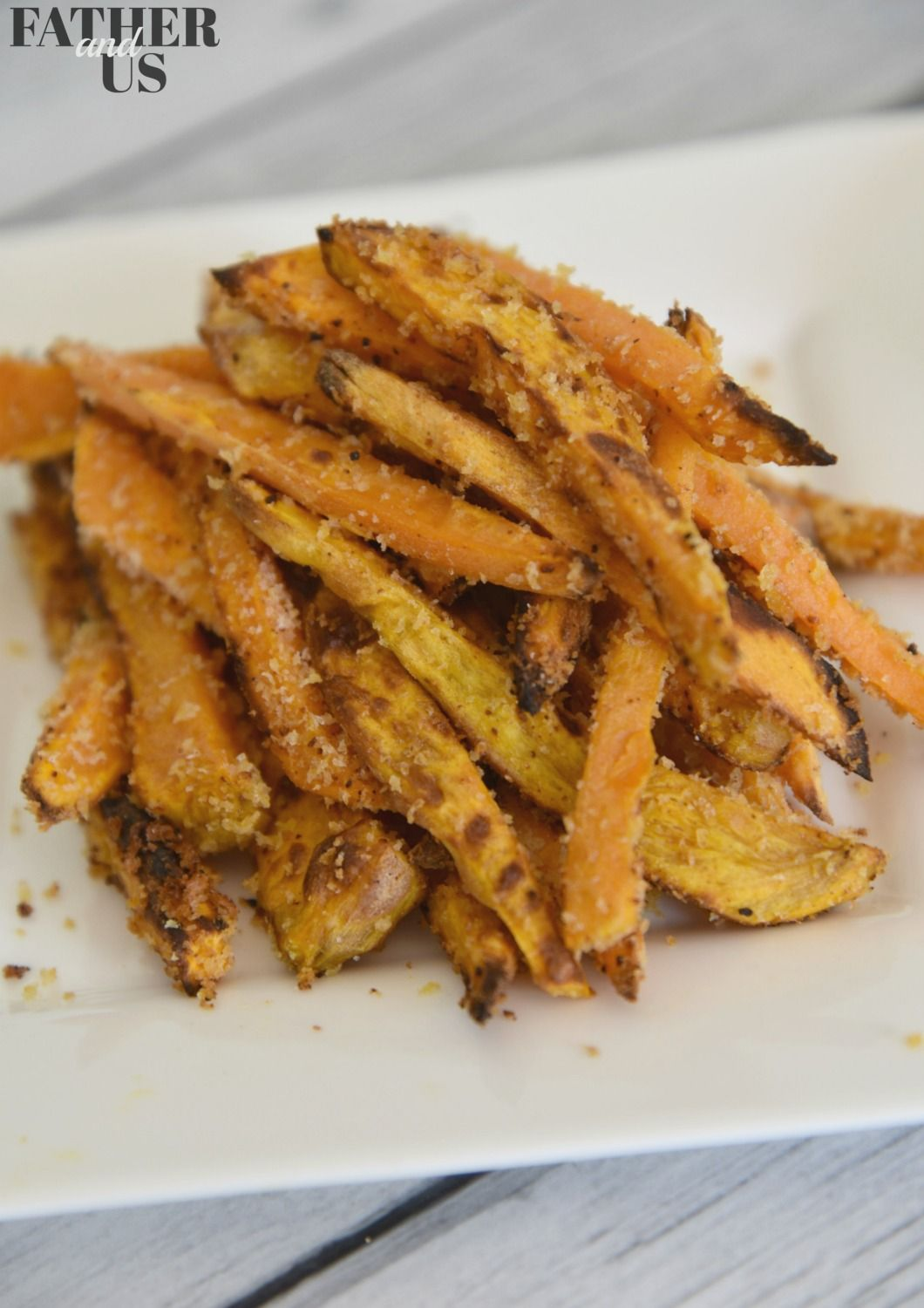 Panko Crusted Air Fryer Sweet Potato Fries Father and Us