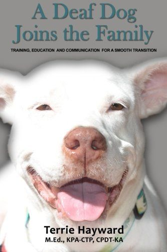 A Deaf Dog Joins The Family Training Education And