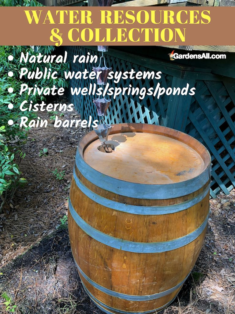 Wooden Rain Barrels Vs Plastic Rain Barrels Pros And Cons Rain Barrel Mulching Barrel