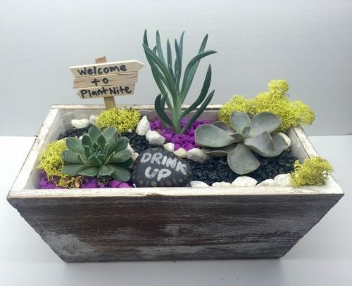 Pleasant Tapered Wooden Succulent Garden With Custom Sign Beutiful Home Inspiration Truamahrainfo