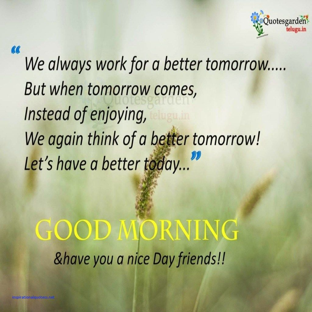 Good Morning Quotes Inspirational In English  Good morning quotes