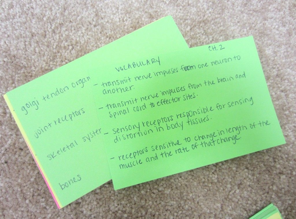 NASM notecards (With images) Body tissues, Nasm cpt, Study