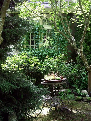 Gardens, Front Yards And Planting