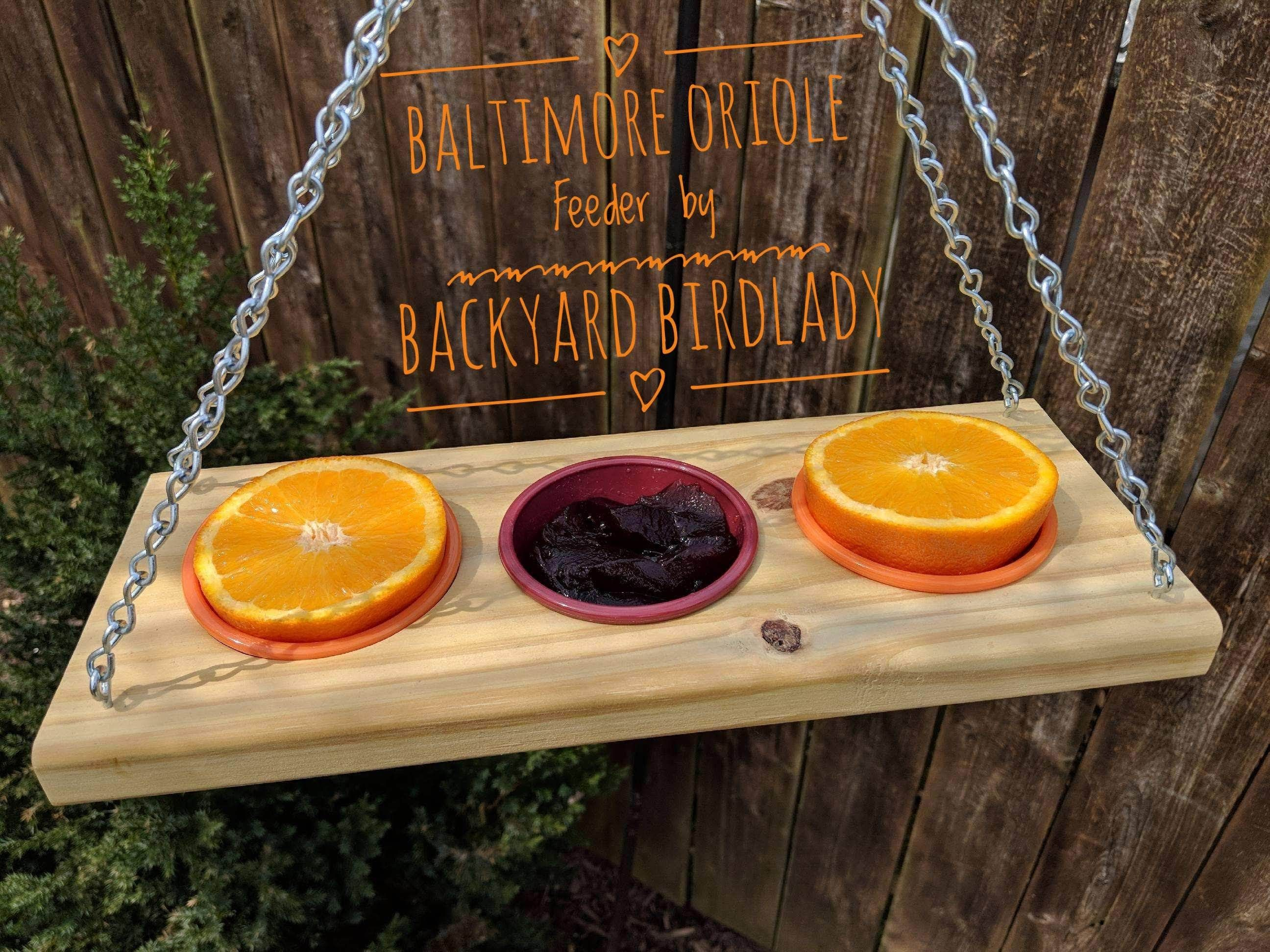 Baltimore orioles love this new oriole feeder order