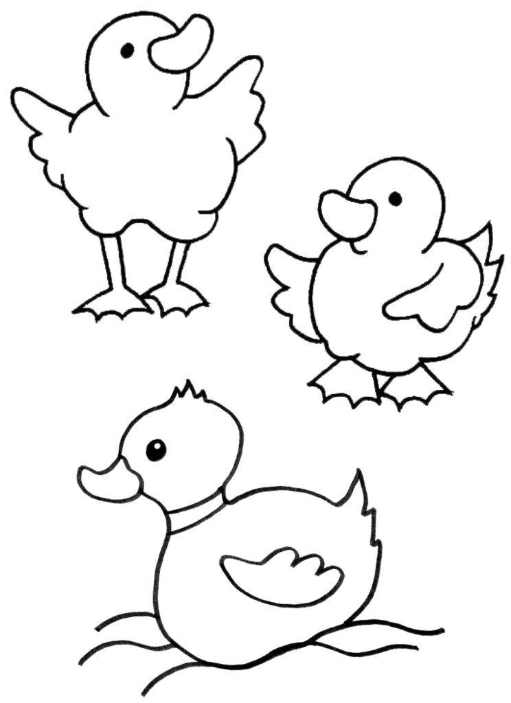 Malvorlagen Tiere Ausmalbilder Zum Ausdrucken Mytoys Blog Ausmalbilder Ausmalbilder Fruhling Ausmalen