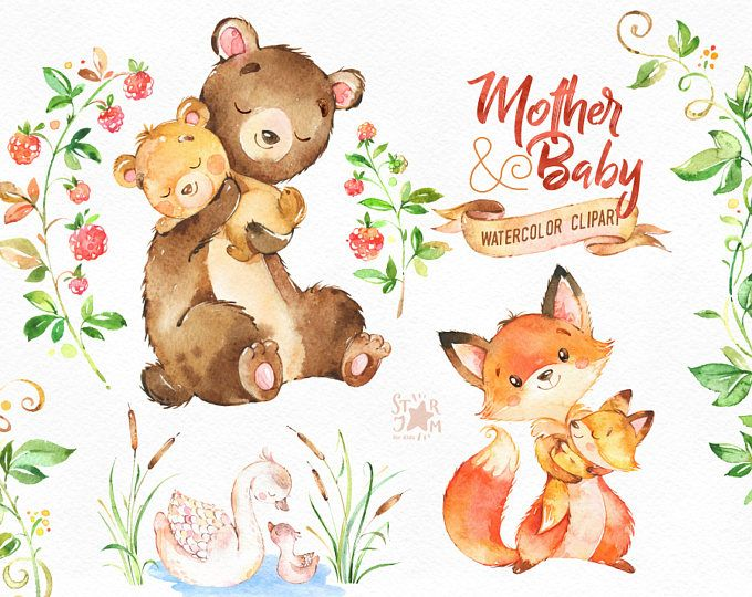 mother amp baby watercolor animals clipart fox bear swan