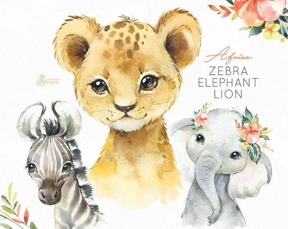 7211888d74634 Africa Zebra Elephant Lion Watercolor little animals clipart