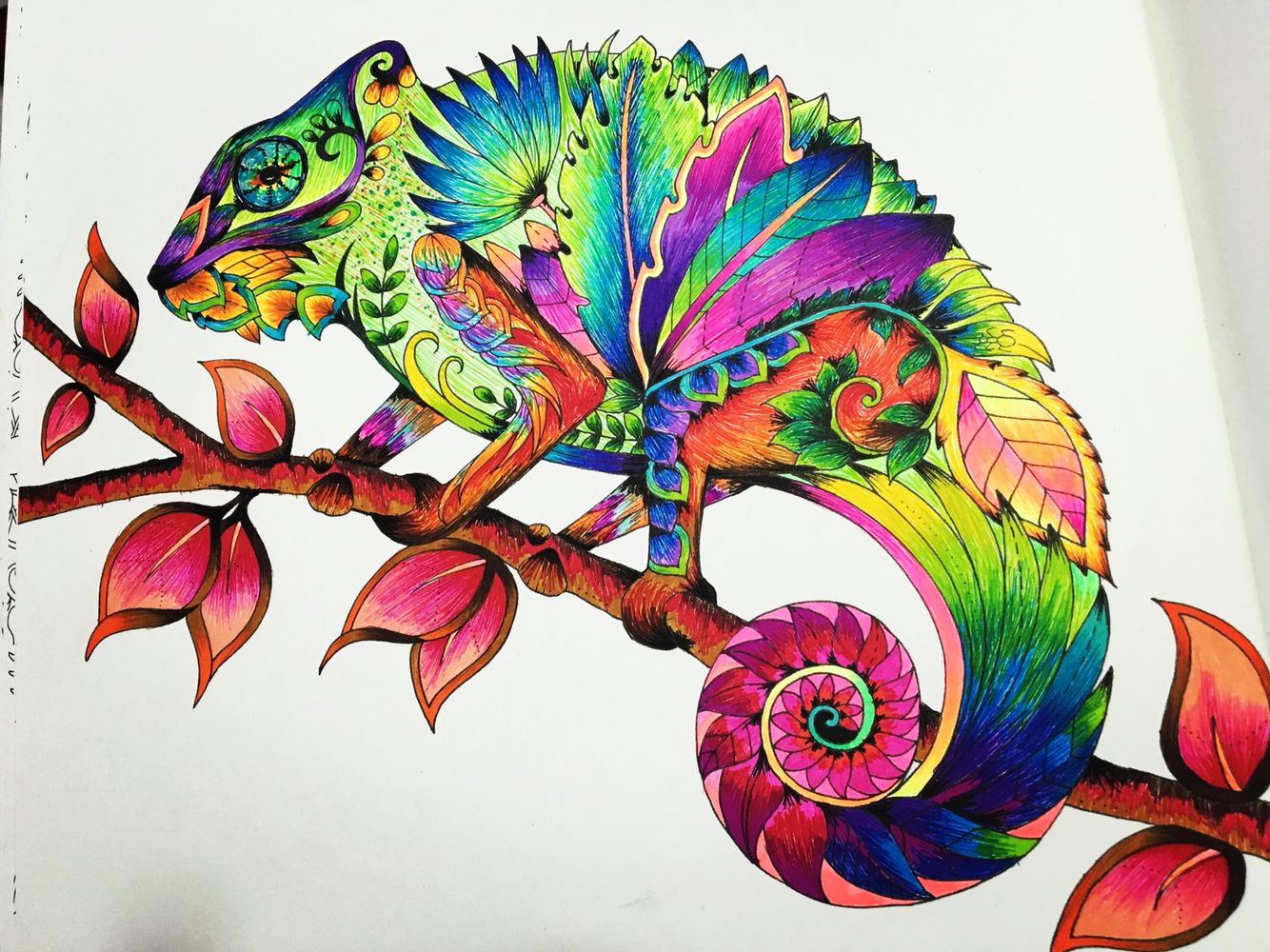 Chameleon Magical Jungle Coloring Books Johanna Basford Neon