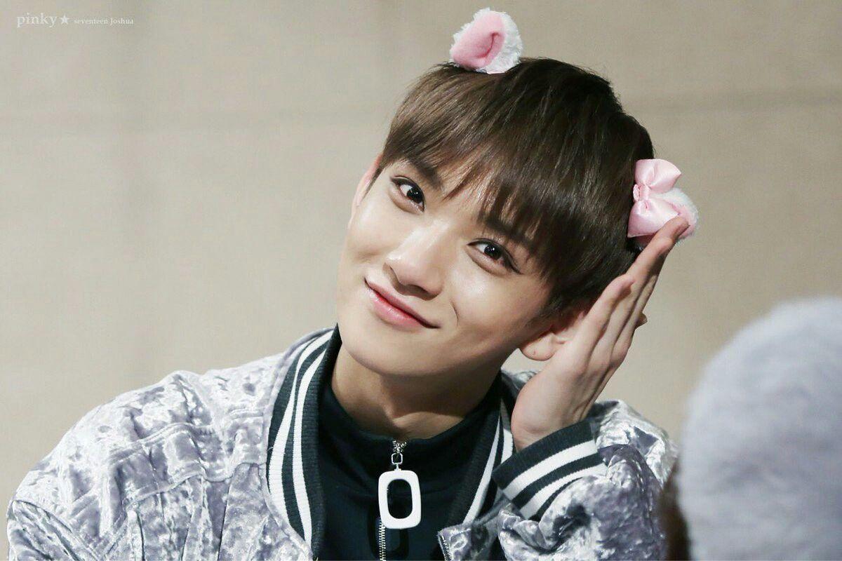Seventeen Joshua Kpop Korea K Pop Korean Cute Kitty Cat Kawaii Idol Seventeen Wajah Instagram