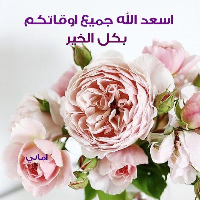 اسعد الله اوقاتكم Flowers Flower Arrangements Beautiful Flowers