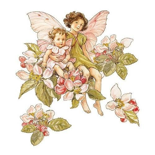 Fairy Wall stickers - Bing Images