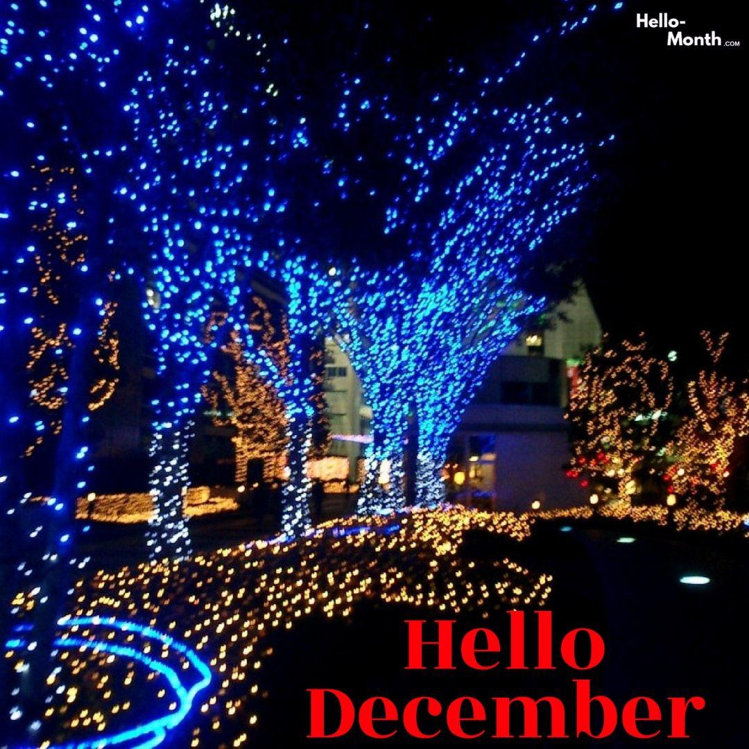Hello December Facebook Covers Blue Christmas Lights White Christmas Lights Outdoor Led Christmas Lights