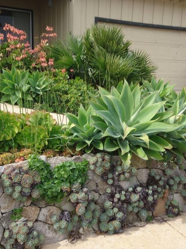 mur de cl ture 98 id es d 39 am nagement murs de jardin mur et plantes. Black Bedroom Furniture Sets. Home Design Ideas