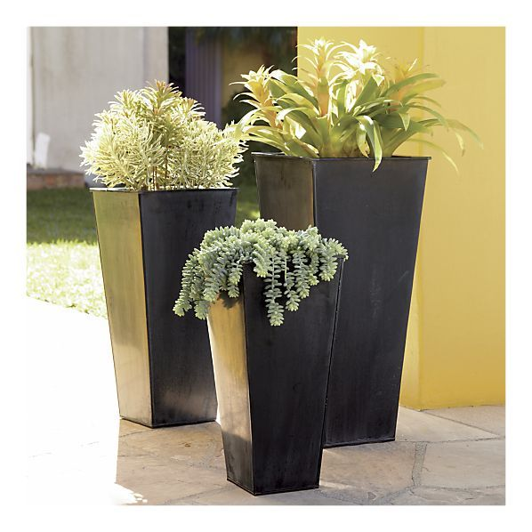Crate & Barrel Set of 3 Zinc Tall Square Planters $99.95 | Outside on square terracotta planters, square iron planters, square stone planters, square plastic planters, square fiberglass planters, square white planters, square outdoor planters, square lead planters, square garden planters, square aluminum planters, square tin planters, square brass planters,
