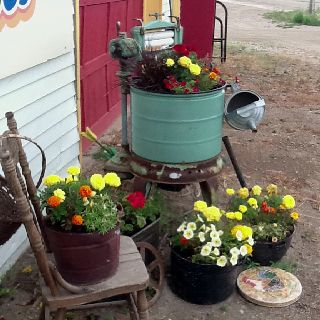 Fun planting flowers in antique containers.
