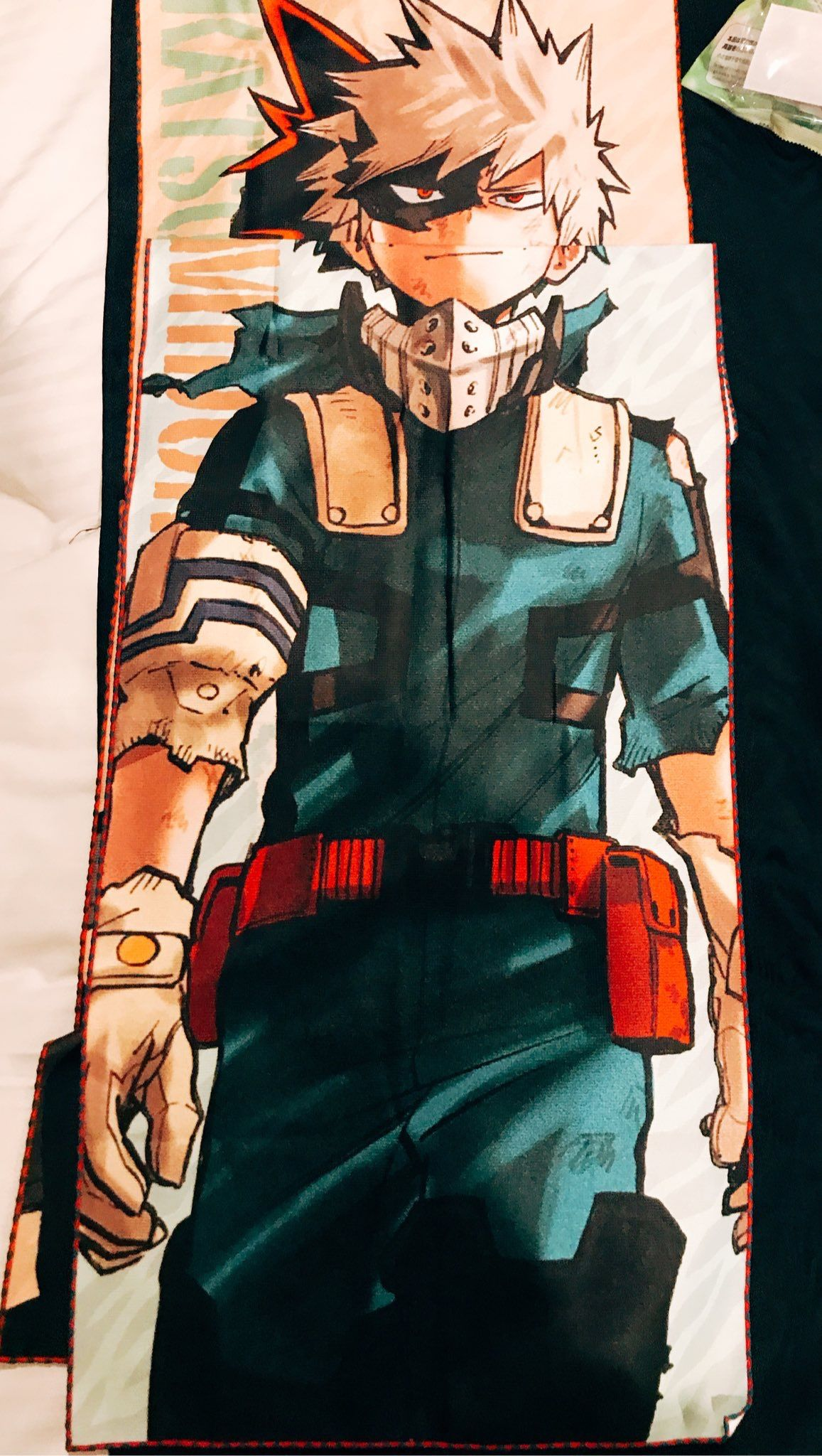 Bakugou In Midoriya S Hero Costume Hero Costumes Hero My