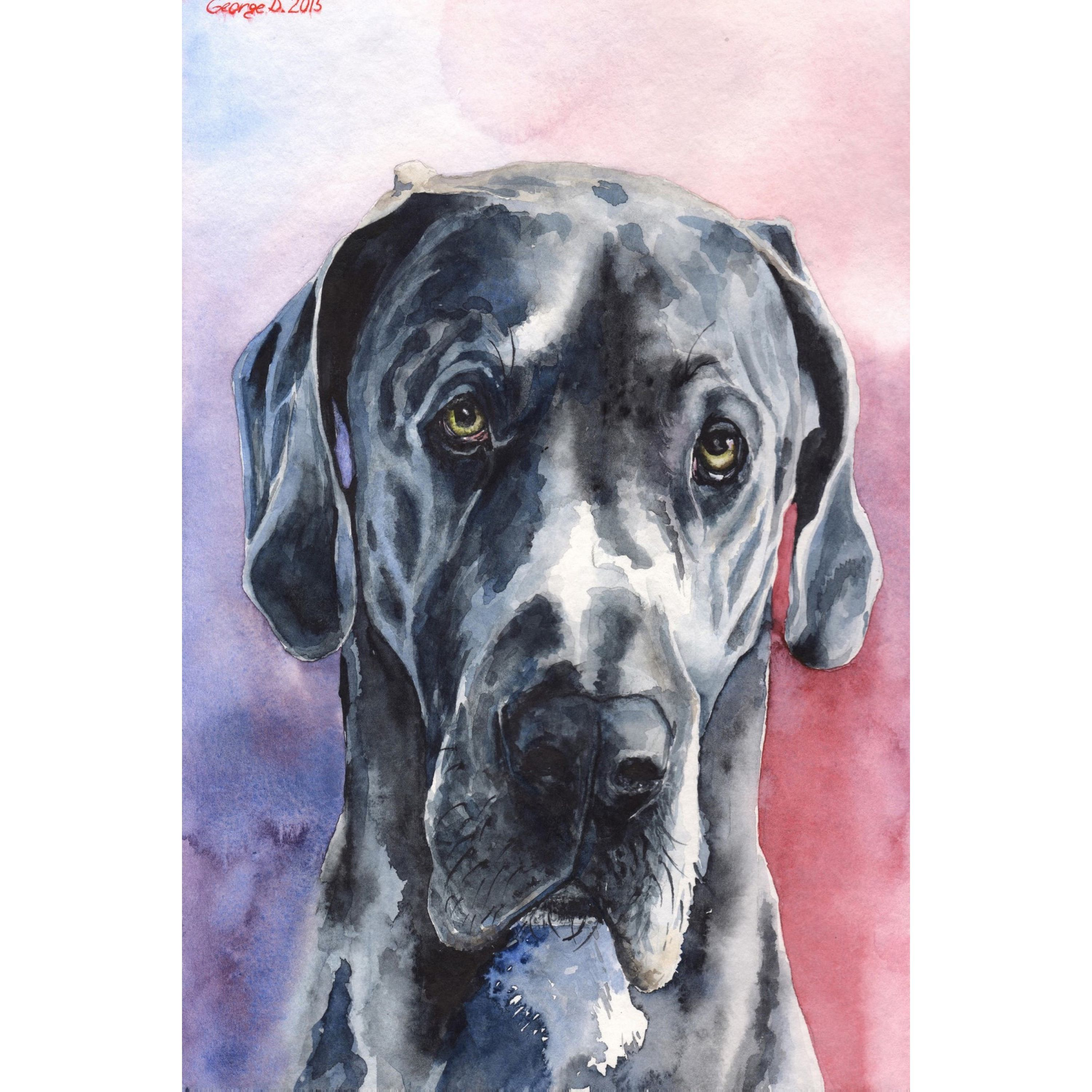 Marmont Hill Handmade Great Dane 3 Print On Wrapped Canvas Dog