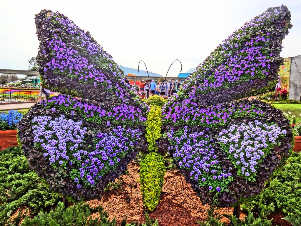 Butterfly Topiary Epcot Flower And Garden Festival 2016 In Photos Epcot Flower And Garden